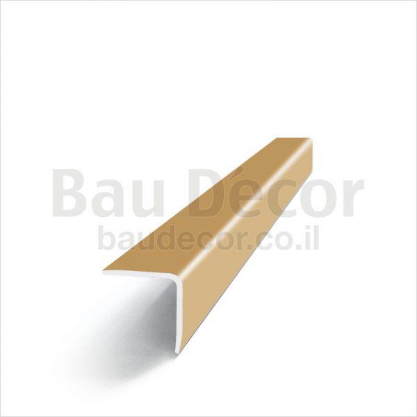 MODEL-61569_10x10_gold